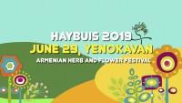 Фестиваль Айбуйс
