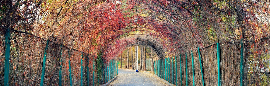 Yerevan Botanical Garden