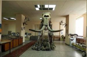 h-karapetyan-geological-museum