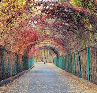 Ереванский Ботанический Сад